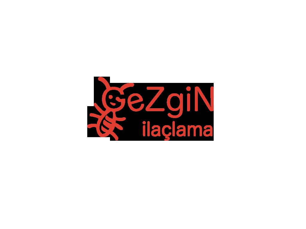 gezginlogotrs